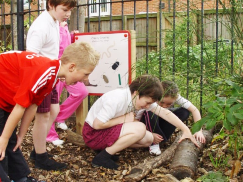 Playground equipment to allow children to explore the natural world during school lessons or break times.
